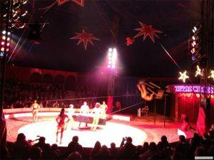 Tropics Global College Circus D